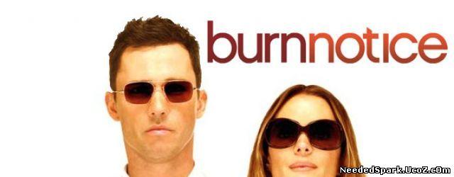 Burn Notice Serial Online